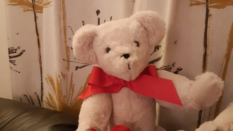 Teddy All Heart