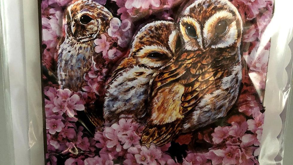 3 Owls Card
