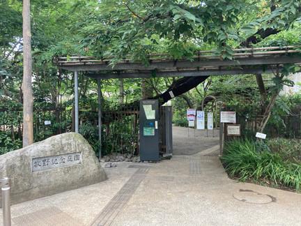 樺太植物というレディ・メイド