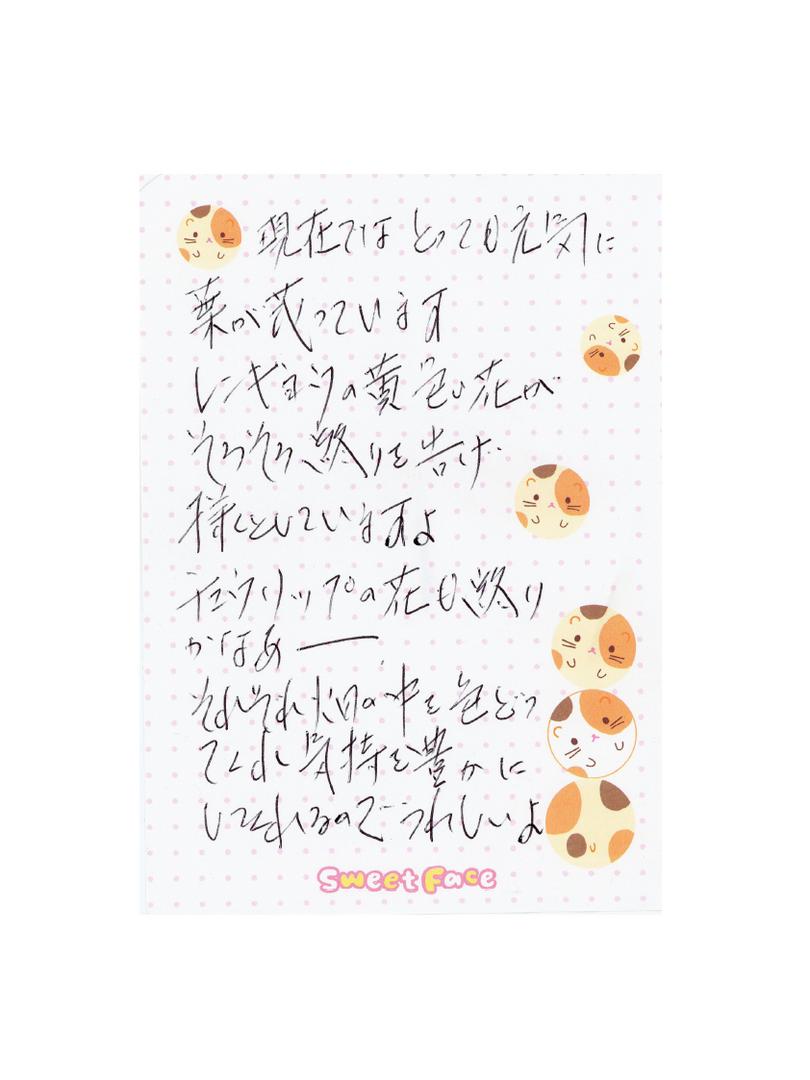 花の様子を手紙に書いていました