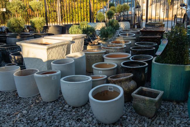 Pottery White Pots Various Sizes.jpg