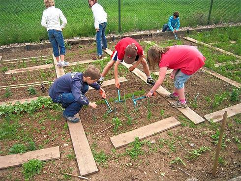 school-garden-1737320_1280_edited.jpg