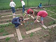 school-garden-1737320_1280.jpg