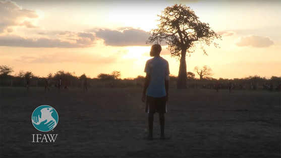 Chikolongo Livelihoods Project