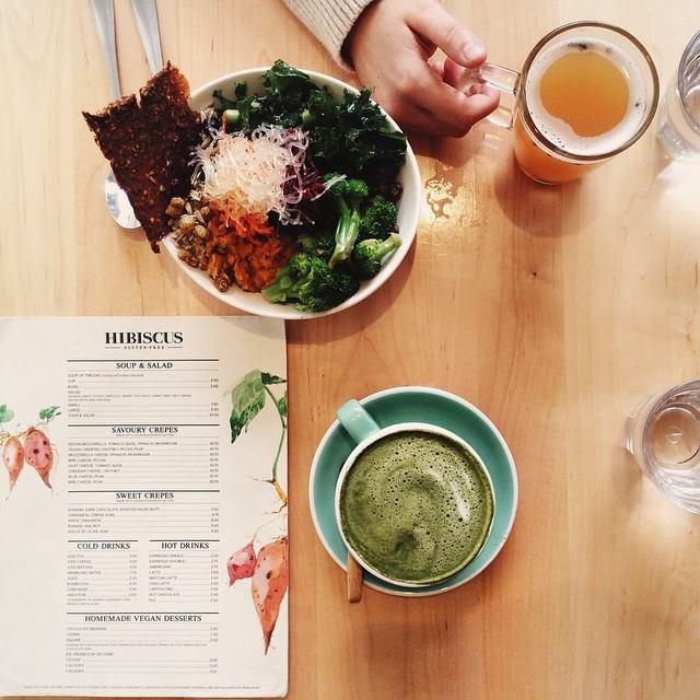 Hibiscus - Kensington