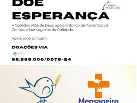 Live: Catedral promove conversa sobre o uso da vacina