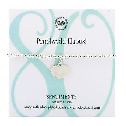 Penblwydd Hapus 80! Sentiment Bracelet