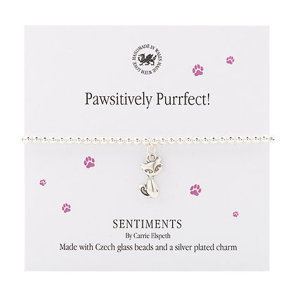 Pawsitively Purrfect Sentiment Bracelet