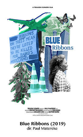 Blue Ribbons.jpg