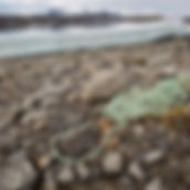 SvalbardBeachLitter_BenPorter1.jpg