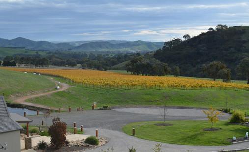 sedona-estate-winery.jpg