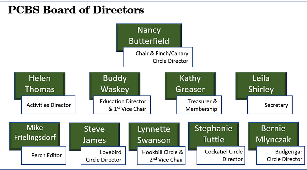 Board Members for WIX.png