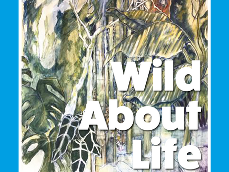 Wild About Life | 13th—20th August