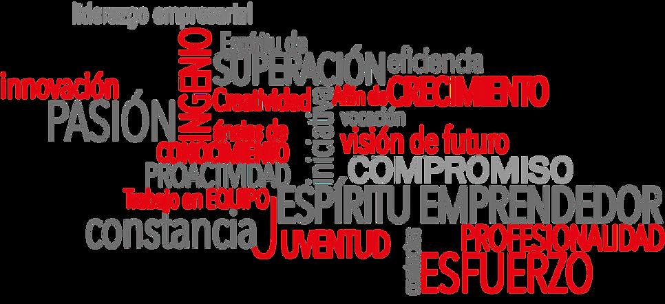 valores_sueño_de_aguilas.png