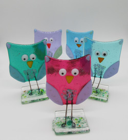 Owls group