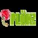 logo Plök! copy.PNG