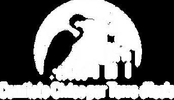 Logo Comitato Civico per Torre d'Isola ONLUS