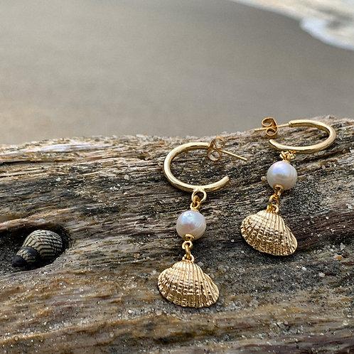 Shell Hoops