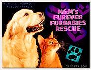 #mmffrescue #animalrescue #doglovers #ca