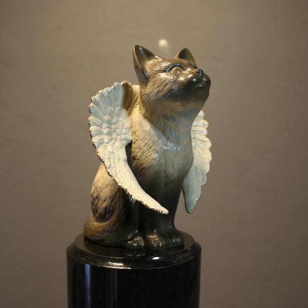 bronze ( mau )