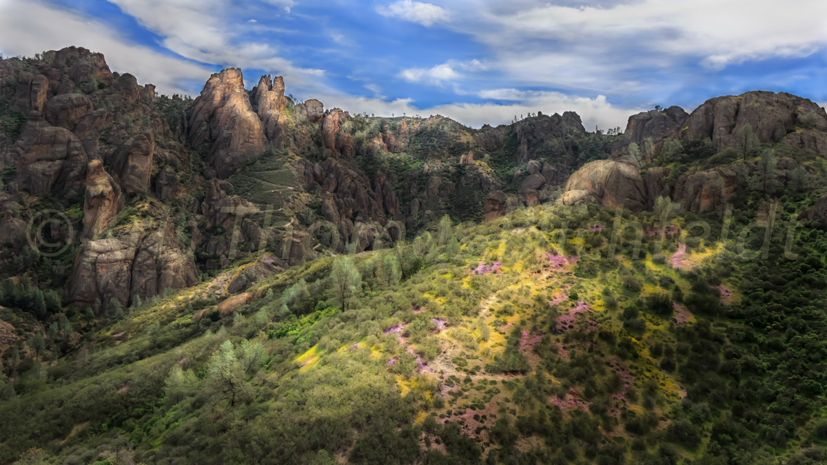 Early spring pinnacles_