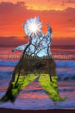Krishna the sun dancer