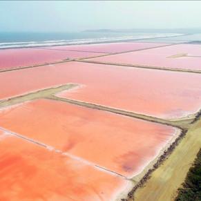 PAISAJE PRODUCTIVO: Salinas de Galerazamba | El mar rosado de Colombia