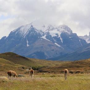 15 PAISAJES IMPERDIBLES DE CHILE