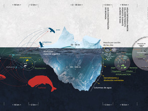 VISUALIZACIÓN Y APROXIMACIÓN A UN ICEBERGSCAPE ANTÁRTICO