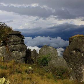 PÁRAMO DE GUERRERO, ENTRE LOS CAMBIOS DE LA SABANA Y EL DESASTRE DE LA HUMANIDAD   Colombia