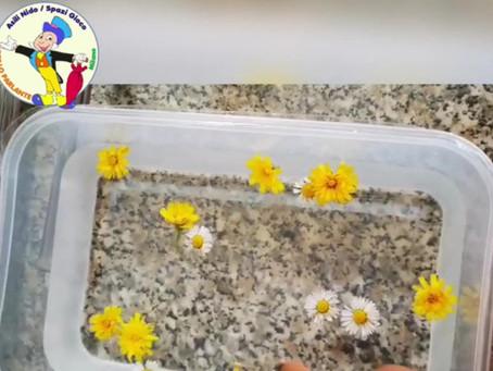 Giochiamo con i fiori... e tanto altro!