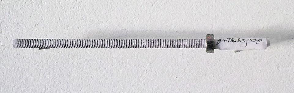 Le diamètre d'une feuille, Alban Denuit