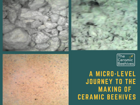 A Journey on Micro-Level