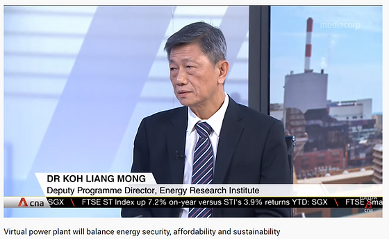 VPP - Dr Koh LM on CNA Interview.png