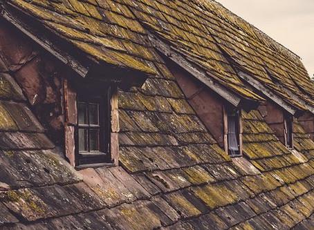Top 7 Roof Maintenance Tips