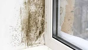 Causes of damp in buildings U.K