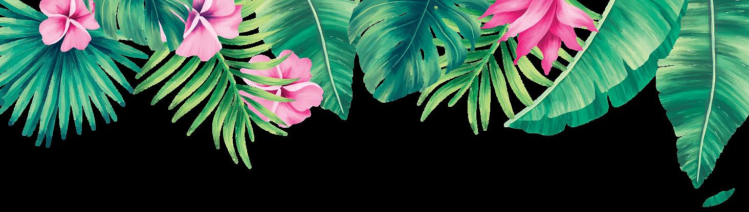 Leaf Top.png