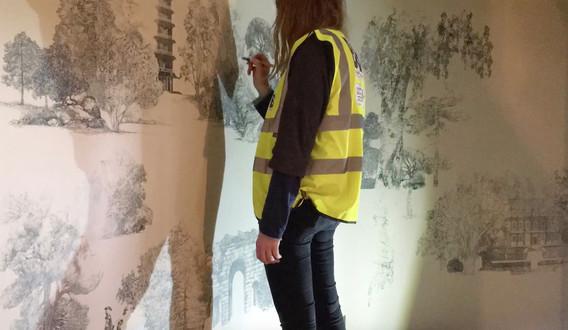 lucille-wip-mural1.jpeg