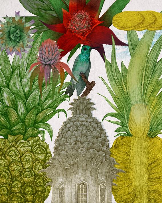 LucilleClerc-Pineapple.jpg
