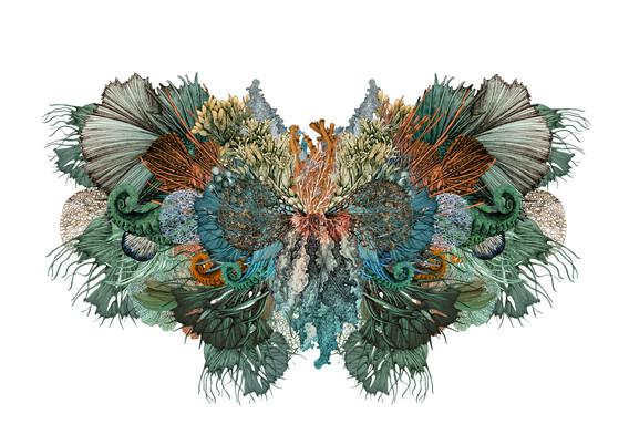 lucille-clerc-Rorschach-butterfly3.jpg