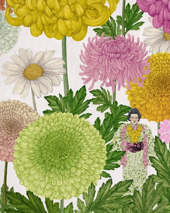 LucilleClerc-chrysanthemum.jpg