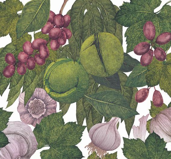 Lucille-Clerc-richnuts-balsamic.jpg