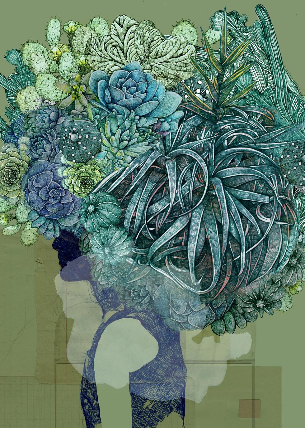 LucilleClerc-Kodama-succulents-.jpg