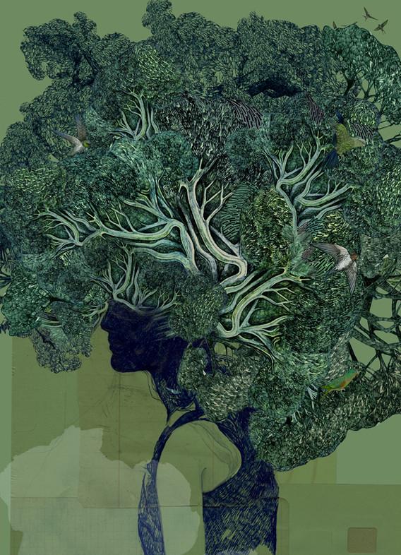 lucilleclerc-kodama-rainforest.jpg