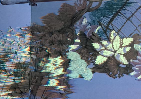 lucilleclerc-jaguar27.jpg