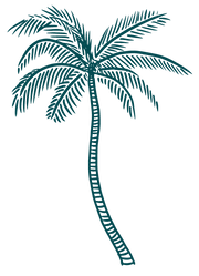 PALM-LINKS.PNG