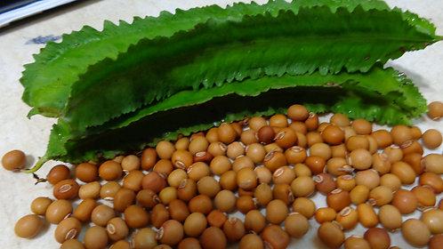 Habichuela Alada/ Winged Bean