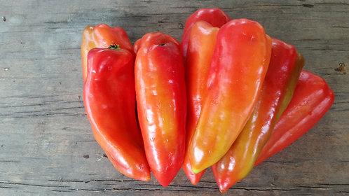 """Pimiento de Cocinar / Sweet Pepper """"Blanco"""""""