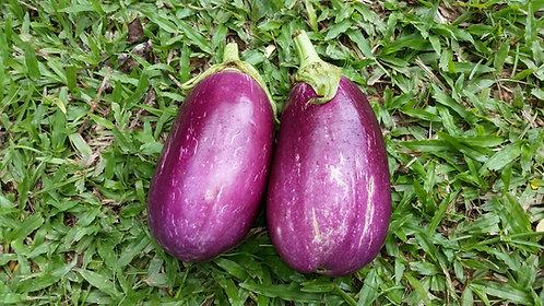 "Berenjena / Eggplant ""Rosita"