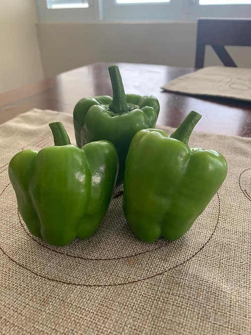 "Pimiento Morrón / Bell Pepper ""California Wonder"""